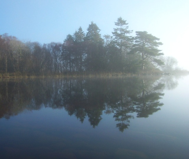 trees reflected on Lough Eske
